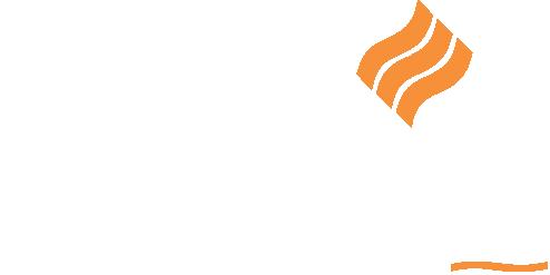Davis Wagon Services logo